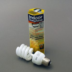 15 Watt Sunshine CFL Bulb