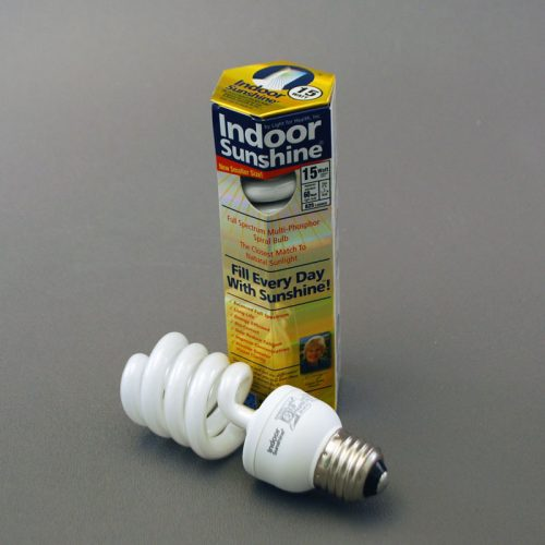 Single 30-watt Spiral Bulb Indoor Sunshine